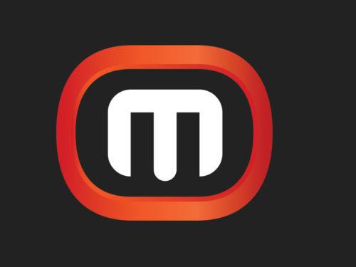 metalocaima_logo